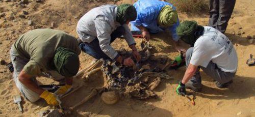 صورة عـاجــل |البوليساريو و الجزائر في ورطة دولية خطيرة بعد الكشف عن مقابر جماعية بتندوف