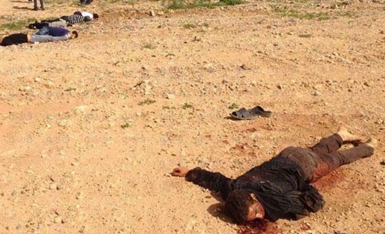 صورة البوليساريو ترتكب مجزرة رهيبة في حق محتجين صحراويين